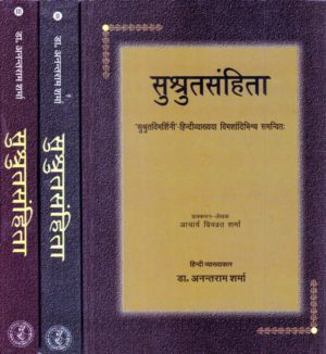 Books Archives | Page 78 of 89 | Shri Saraswati Prakashan